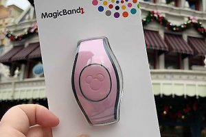 New Millennial Pink MagicBand