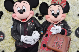 Minnie Mouse Coach Collection